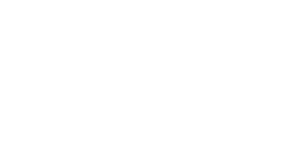 Moses Media Co.